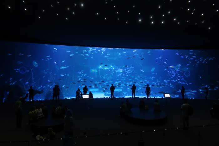Aquarium Poema del Mar en Gran Canaria con el Cristal Curvo más grande del mundo