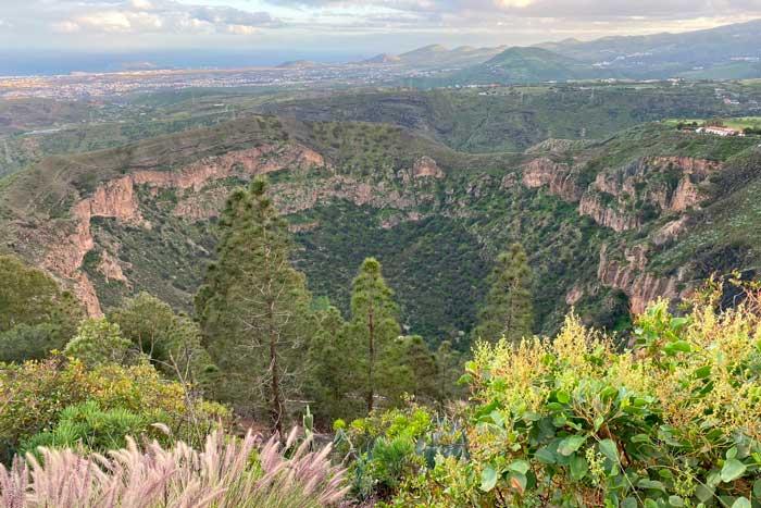 Caldera de Bandama en Las Palmas de Gran Canaria