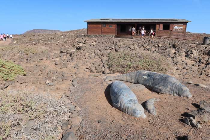 Centro de Visitantes de la Isla de Lobos
