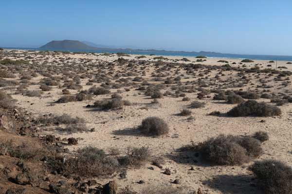 Dunas de arena de Corralejo en el norte de Fuerteventura