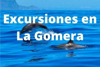 Mejores excursiones y tours en La Gomera