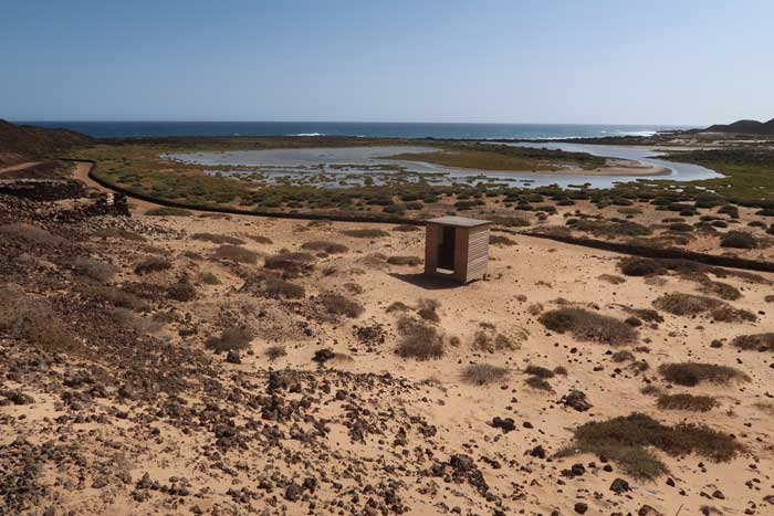 Lagunitas del islote de Lobos en Fuerteventura