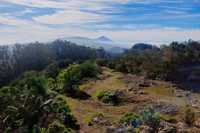 El Teide desde Mirador de Anaga en Tenerife