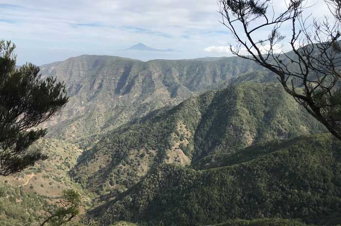 Mirador del Parque Nacional del Garajonay en La Gomera