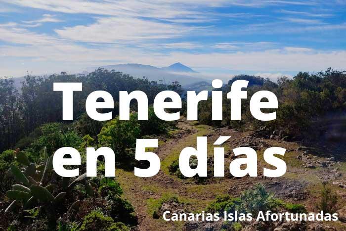 Qué ver en Tenerife en 5 días
