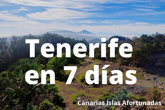 Qué ver en Tenerife en 7 días