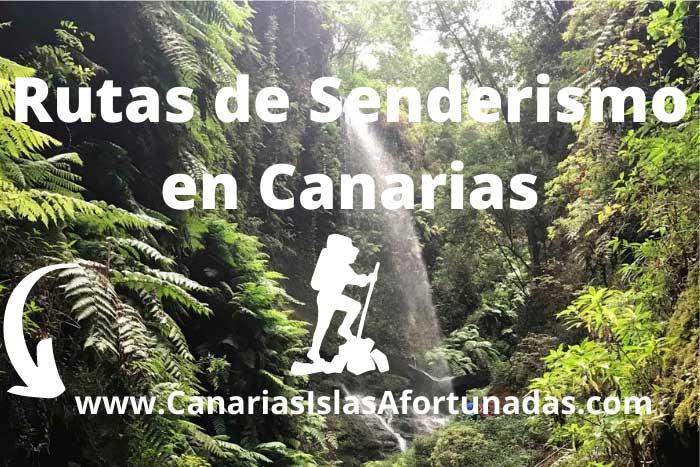Guía con las Mejores Rutas de Senderismo en las Islas Canarias