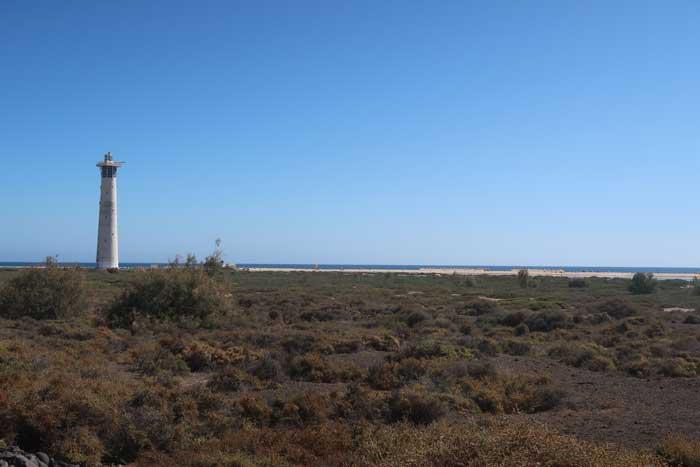 Saladar de Jandía con el Faro de Morro Jable