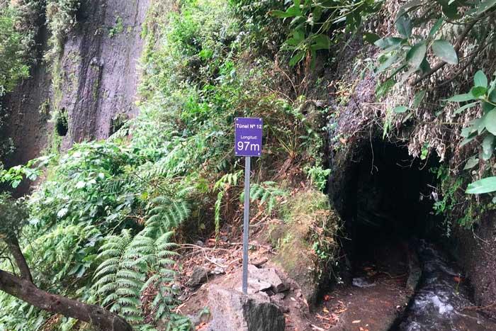 Tunel 12 con agua de la ruta de senderismo de Marcos y Cordero en La Palma