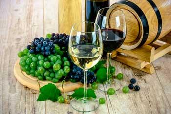 Visita guiada a una bodega de vino canario en La Palma